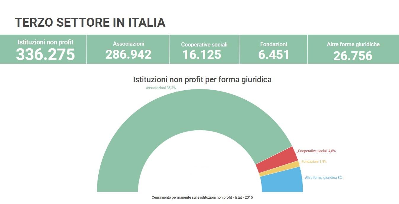 Il terzo settore in Italia - dati Istat